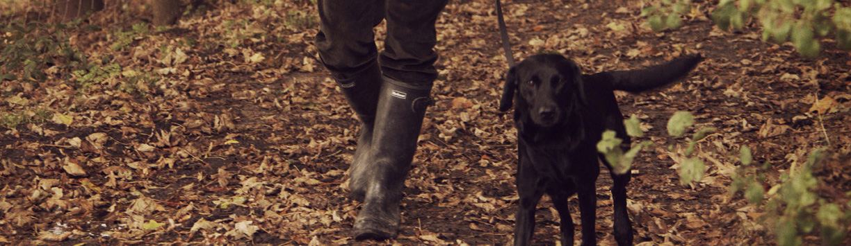 A new range of Barbour Wellington Boots - New and Improved