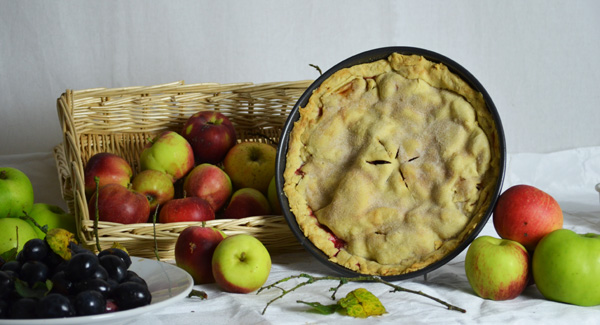 Bramley apple and damson pie