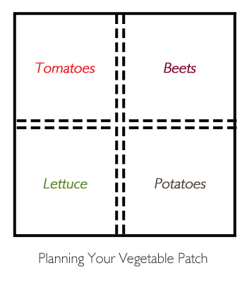 Planning your vegetable patch