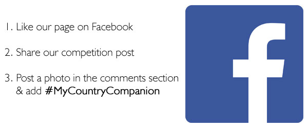 Philip Morris Country Companion Competition | Facebook
